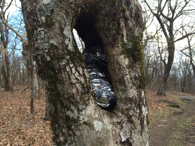 Someone creatively tried to hike the space blanket they no longer wanted.