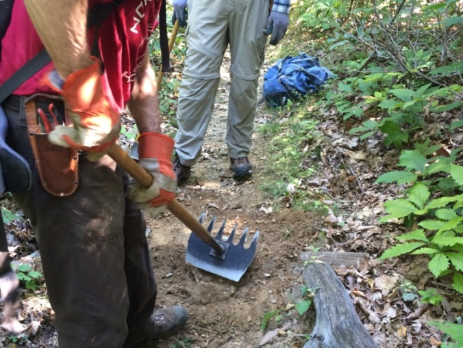 I led an intermediate level group of five to build check dams and water bars on my section of the Appalachian Trail.